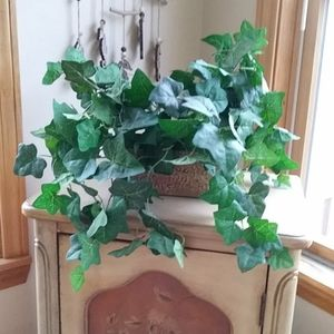 Beautiful Flowing Artificial House Plant